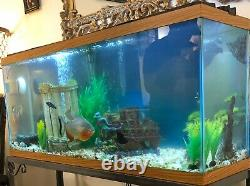 100 Gallon Fish Tank Includes Light, Filter, Air Compressor, Some Decorations